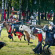 Medieval Battlefield — Stock Photo