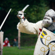 Duel in medieval times — Stock Photo #32649747