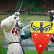 UNIEJOW - Knights Duel — Stock Photo #32652197