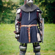 Armored  Knight — Stock Photo