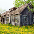 Wooden ramshackle cottage house — Stock Photo #38926085