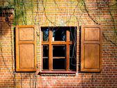 ウィンドウとレンガの壁でシャッター — ストック写真