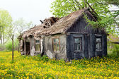 Wooden ramshackle cottage house — Stock Photo