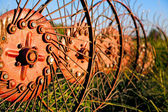 Hay tedder - red wheel rake, an old farm machine — Stock Photo