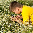 Boy sees flowers through magnifying glass — Stock fotografie