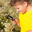 Boy sees flowers through magnifying glass — Stock Photo
