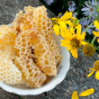 Natural honey in the comb — Foto Stock