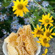 Natural honey in the comb — Stockfoto