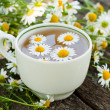 Herbal tea of chamomile flowers — Stock Photo #12676671