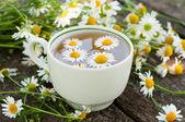 Herbal tea of chamomile flowers — Stock Photo