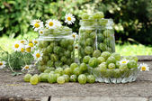 Cooking homemade gooseberry jam — Stock Photo
