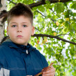 Boy near tree in park — Stock Photo #13140192
