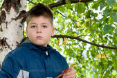 Boy near a tree in the park — Stock Photo