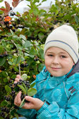 Boy with a sprig of Aronia — Stock Photo