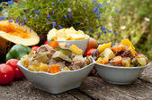 Vegetable stew with meat — Stock Photo