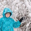 Boy in a snowy forest — Stock Photo