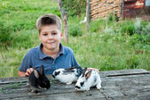 A boy with a rabbit in the garden — Stock Photo