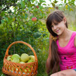 Teen girl with a basket of apples — Stock Photo