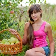Teen girl with a basket of apples — Stock Photo #16217833