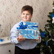 Boy with gifts near a Christmas tree — Stock fotografie