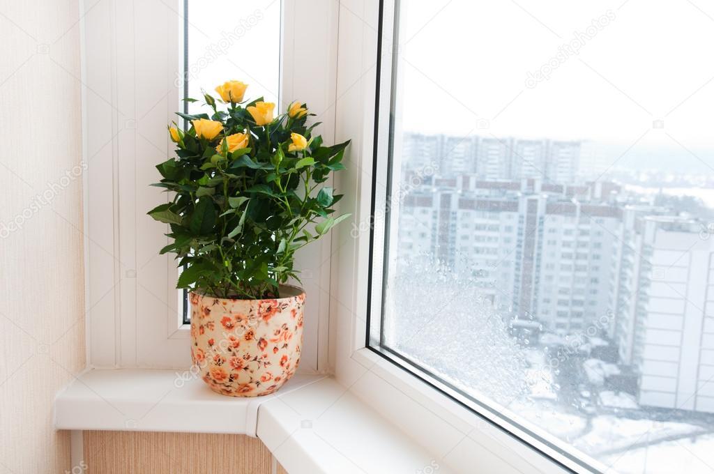 Сколько стоит остекление балкона в москве.