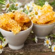 Stock Photo: Delicious Honey comb and daisies