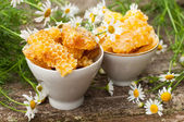 A delicious Honey comb and daisies — Stock Photo