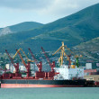 Cargo port at Novorossiysk. Russia - Stock Photo