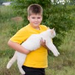 Boy with a white cat — Stock Photo