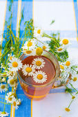 Herbal chamomile tea in a glass cup — Stock Photo