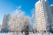 Winter in Moscow, Russia — Stock Photo