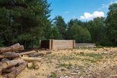 Making wooden pine log house — Stockfoto