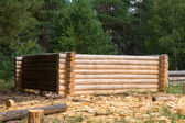 Making wooden pine log house — Stock Photo