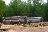 Provedení dřevěných borových srub — Stock fotografie