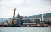 Cargo port in Novorossiysk, Russia — Stockfoto