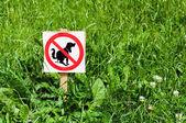Köpekler çimlerde shitting yasaklayan işareti — Stok fotoğraf