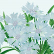 Cornflowers - Stock Vector