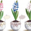 Hyacinths - Stock Vector