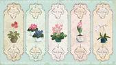 Vintage floral labels — Stock Vector
