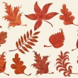Set of autumn leaves — Stock Vector #31129287