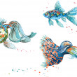 Colorful fish — Stock Vector #47844355
