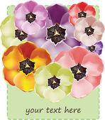 Seamless tulip flowers pattern — Stock Vector