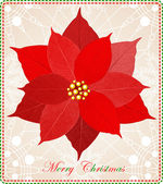 Christmas card with beautiful red poinsettia. — Stock Vector