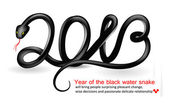 Year of the black water snake. — Stock Vector