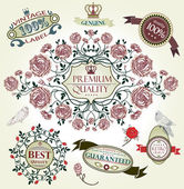 Vintage vector set: retro design elements. — Stock Vector