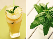 Lemonade and mint — Stockfoto