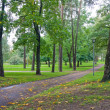Path in city park — Stock Photo
