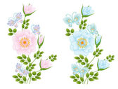 Wild rose flowers and butterflies — ストックベクタ