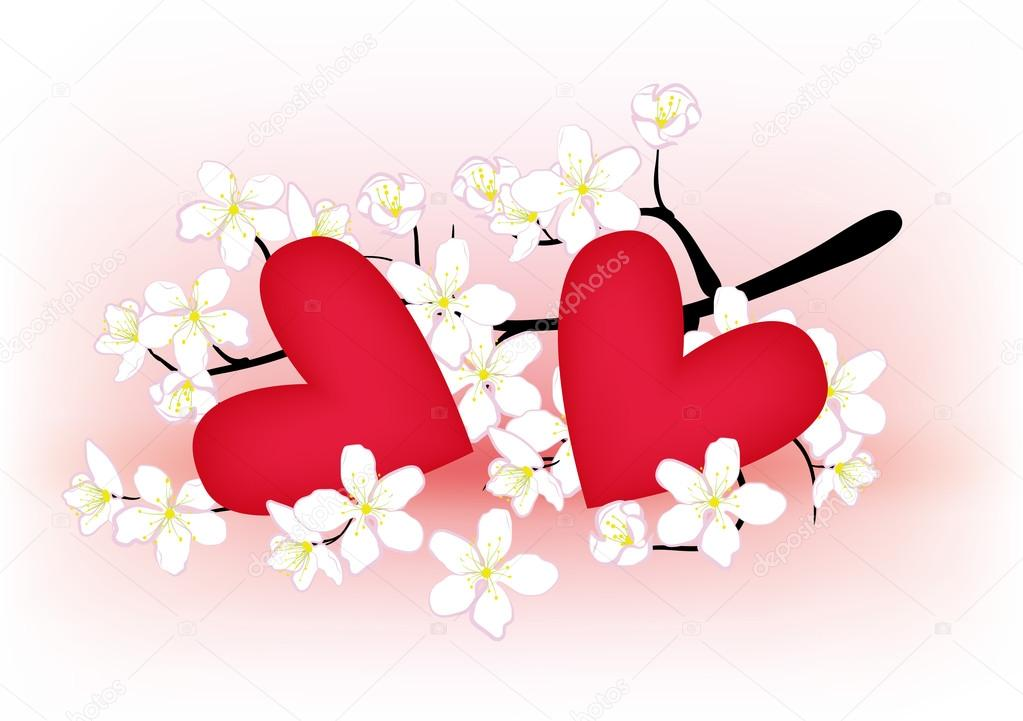 Flowering branch of cherry and heart on a pink background — Stock Vector #13823588
