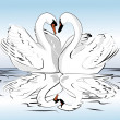 Stock Vector: Pair of swans